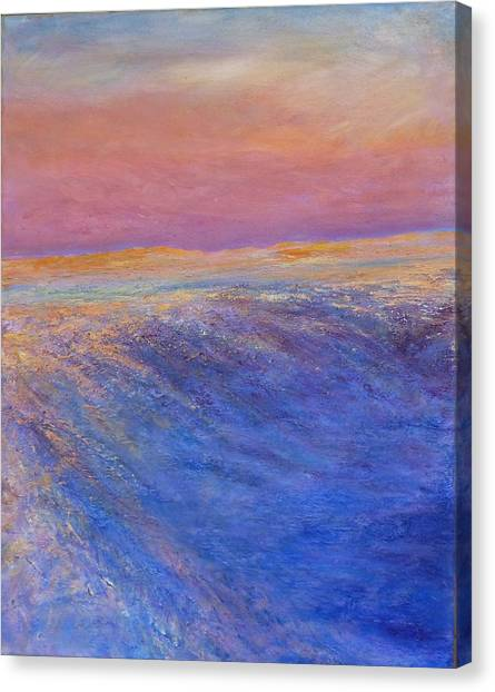 Cold Blush Canvas Print