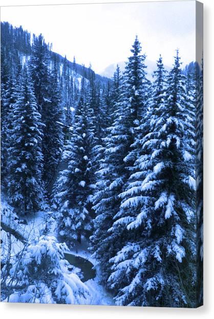 Cold In Colorado Canvas Print