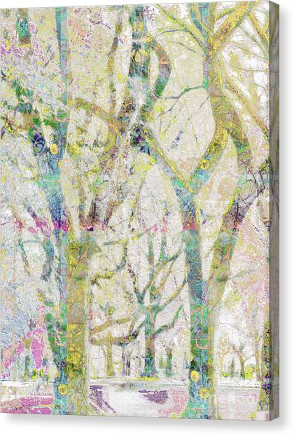 Collage Of Trees Canvas Print