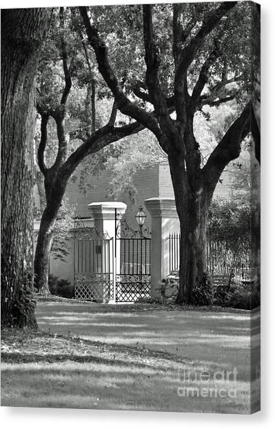 College Of Charleston Gate Canvas Print
