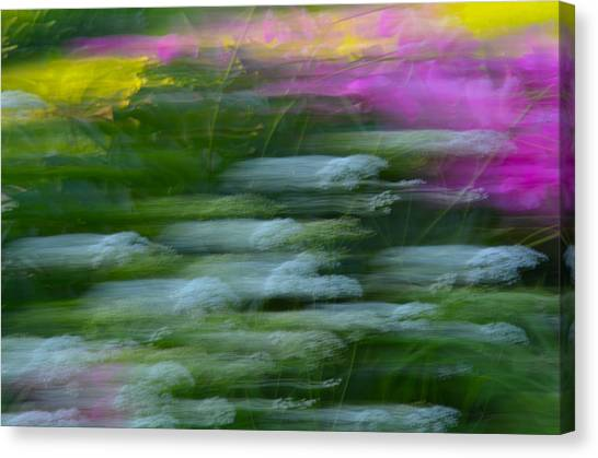 Color Blown Canvas Print