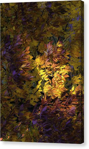 Color Calls Canvas Print