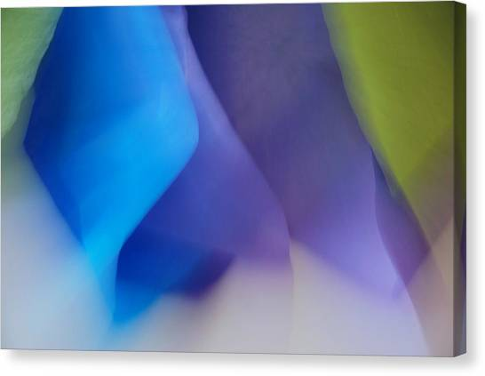 Color Crimp Canvas Print