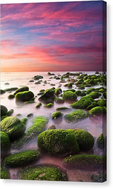 Color Harmony Canvas Print