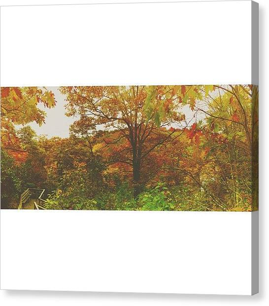 Appalachian Mountains Canvas Print - Color Jungle by Simon Nauert