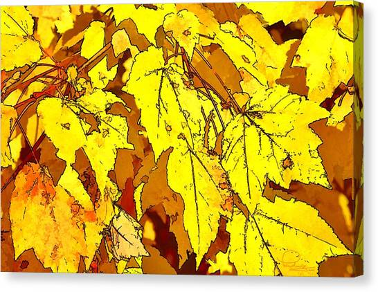 Color Of Fall Canvas Print