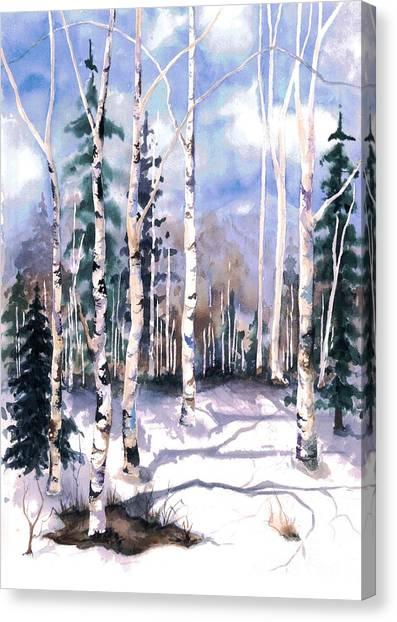 Colorado Aspens 2  Canvas Print