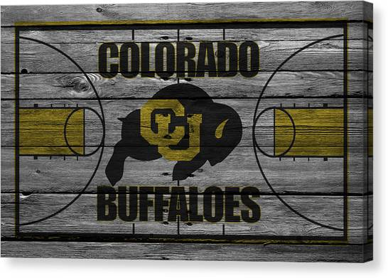 Ball State University Canvas Print - Colorado Buffaloes by Joe Hamilton