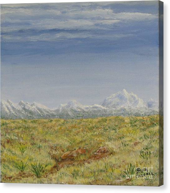 Colorado Eastern Plains Canvas Print by Dana Carroll