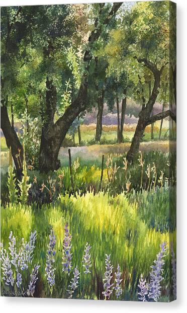 Colorado Evening Shadows Canvas Print by Anne Gifford