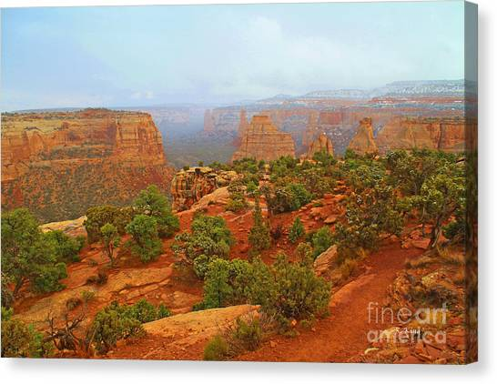 Colorado Natl Monument Snow Coming Down The Canyon Canvas Print
