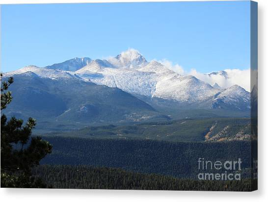 Colorado State University Canvas Print - Colorado Rockies 6 by Douglas Lintner
