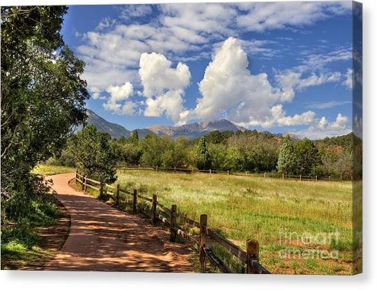 Colorado Scenic Pathway Canvas Print