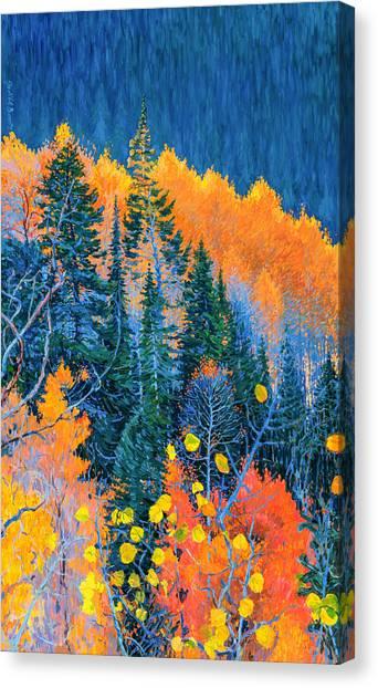 Colorado Trees At Fall Canvas Print