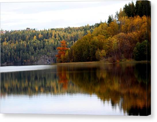 Colored By Fall Canvas Print