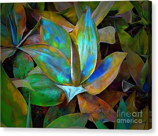 Colored Cactus Canvas Print