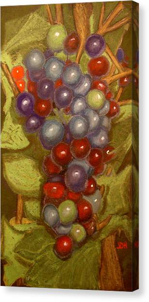 Colored Grapes Canvas Print by Joseph Hawkins