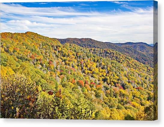 Colored In Smoky Mountains Canvas Print