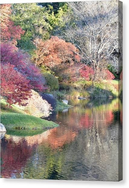 Colored Reflections Canvas Print by Lena Hatch