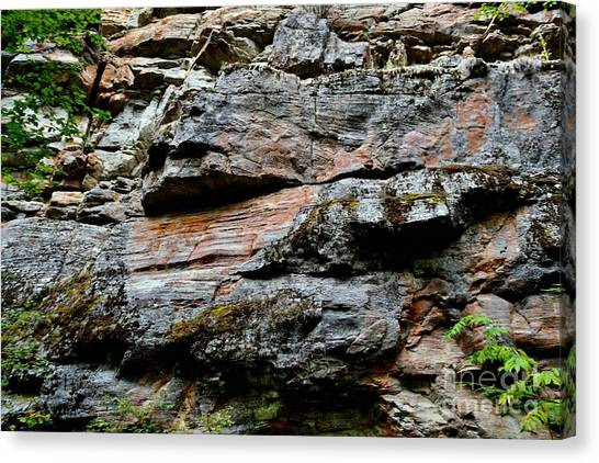 Colored Rock Face Canvas Print by Phil Dionne