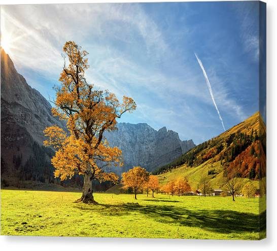 Colorful Autumn At Ahornboden In Canvas Print by Dietermeyrl