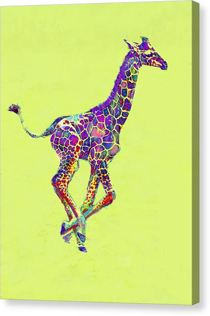 Giraffes Canvas Print - Colorful Baby Giraffe by Jane Schnetlage