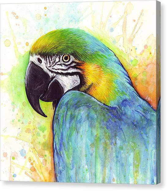 Tropical Birds Canvas Print - Macaw Watercolor by Olga Shvartsur