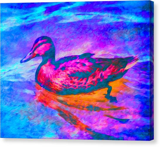 Colorful Duck Art By Priya Ghose Canvas Print
