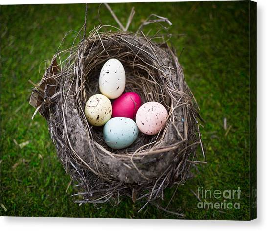 Easter Baskets Canvas Print - Colorful Eggs In Nest by Edward Fielding