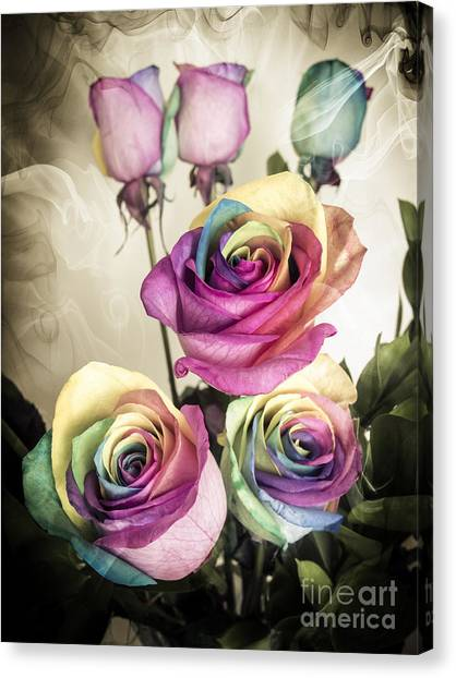 Colorful Kaleidoscope  Roses Canvas Print by Linda Matlow