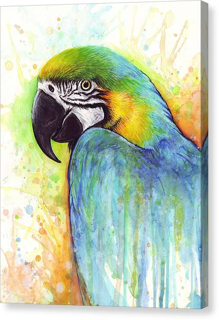 Tropical Birds Canvas Print - Macaw Painting by Olga Shvartsur