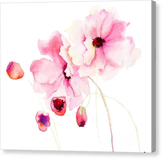 Colorful Pink Flowers Canvas Print