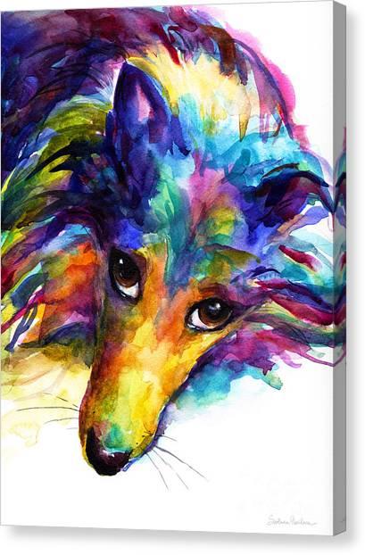 Watercolor Pet Portraits Canvas Print - Colorful Sheltie Dog Portrait by Svetlana Novikova