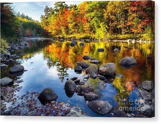 Colorful Trees Along The Swift River Canvas Print by George Oze