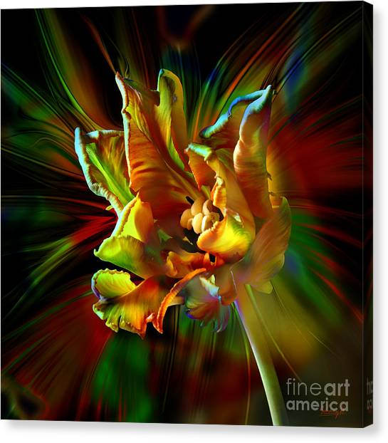 Colorfull Tulip Canvas Print