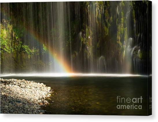 Colors Canvas Print by Andy Wu