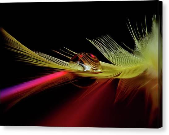 Drops Canvas Print - Colors In The Drop by Aida Ianeva