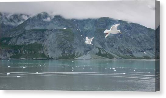 Colors Of Alaska - Glacier Bay Canvas Print