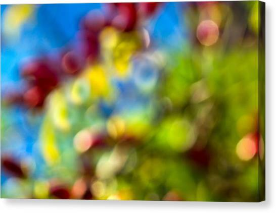Sweet Briar Canvas Print - Colors Of Autumn - Featured 3 by Alexander Senin
