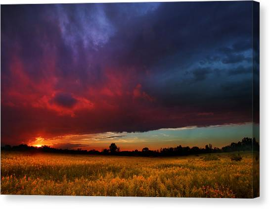 Summer Spectacular Canvas Print