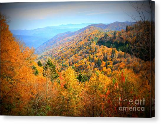 Colors Of The Smokies Canvas Print