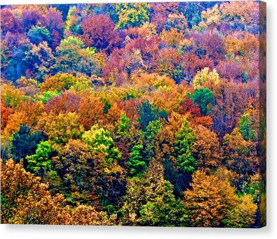 Colors To Winter 2 Canvas Print