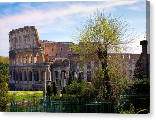The Colosseum Canvas Print - Colosseum In Spring by Walt  Baker