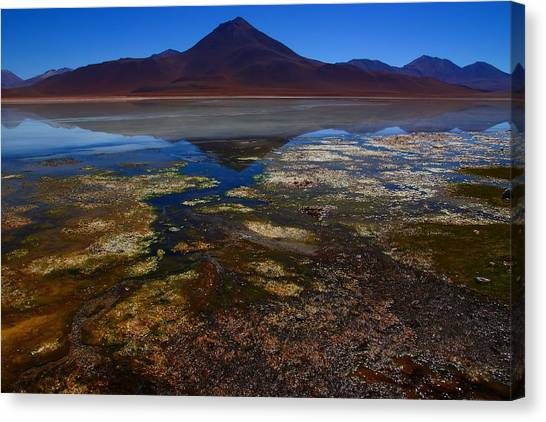 Bolivian Canvas Print - Colourful Reflections 2 by FireFlux Studios