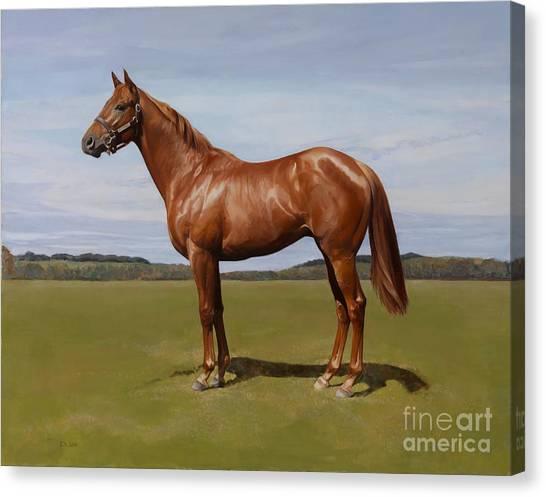 Horse Canvas Print - Colt by Emma Kennaway