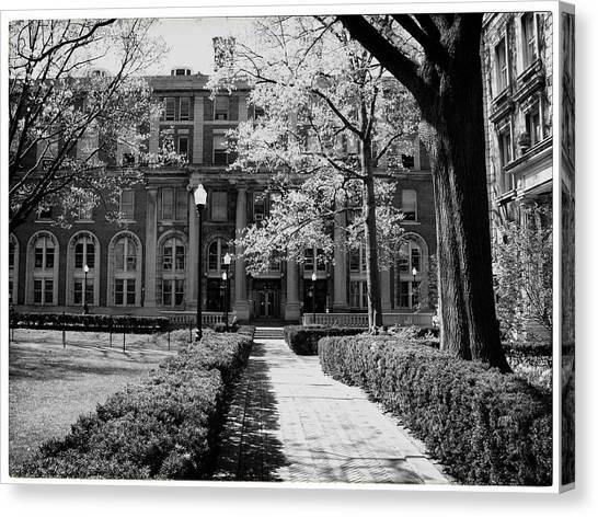 Columbia University Canvas Print - Columbia College Walk by Georgia Fowler