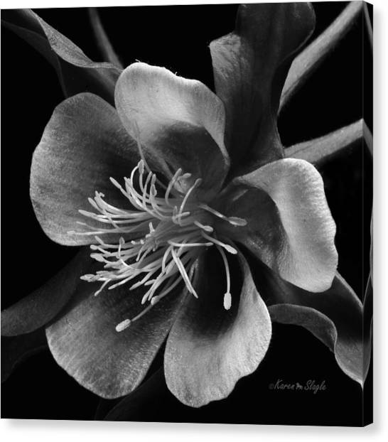 Columbine In Black And White Canvas Print