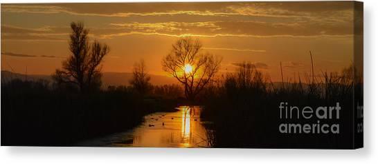 Colusa Wildlife Refuge Sunset Canvas Print