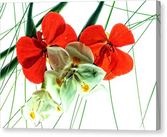 Combo Bouquet Canvas Print