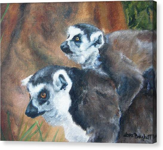 Ring-tailed Lemur Canvas Print - Come On Come On Theyre Ahead by Lori Brackett